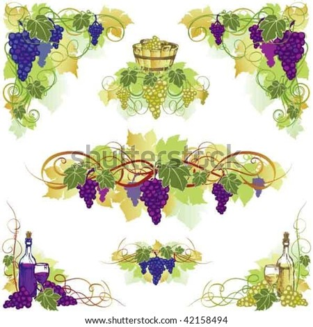 Colored grape and wine ornaments, whit bucket,bottle and glass. - stock vector