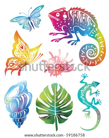 Colored objects of nature - stock vector