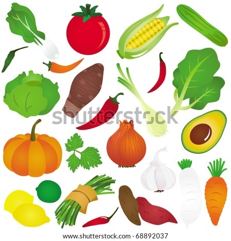 Colorful and Cute vector Icons : Design Elements : Fruits, vegetable, food isolated on white - stock vector