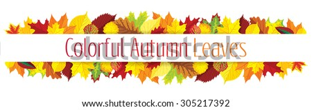 Colorful autumn leaves border, vector illustration - stock vector