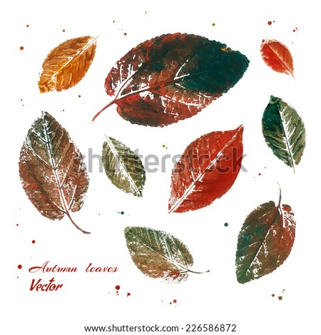 Colorful autumn leaves imprint. Hand drawn with paints. Vector illustration. - stock vector