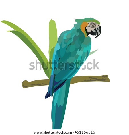 Colorful blue parrot on a branch Vector  - stock vector