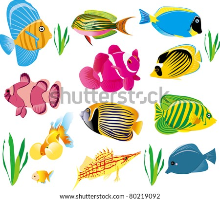 colorful fish set - stock vector