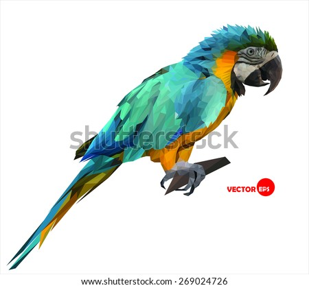 colorful macaw parrot sitting on a wooden stick, made in low polygon style on white background, geometric  vector illustration - stock vector