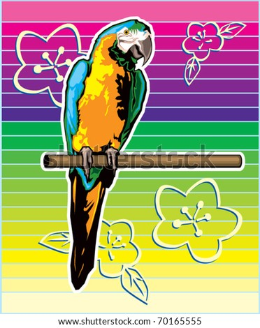 Colorful Parrot Illustration - stock vector