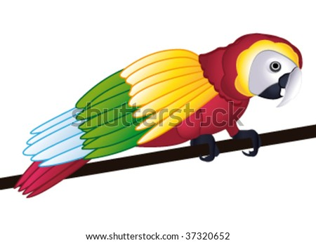 Colorful parrot isolated on white background. Vector illustration. - stock vector