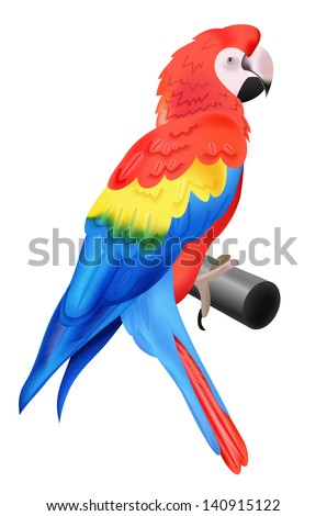 Colorful parrot macaw isolated on white background. Vector illustration for your bird wildlife design. Vivid bird sitting on perch. - stock vector
