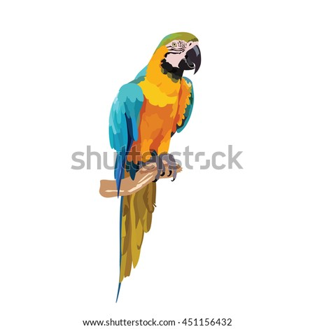Colorful parrot on a branch Vector