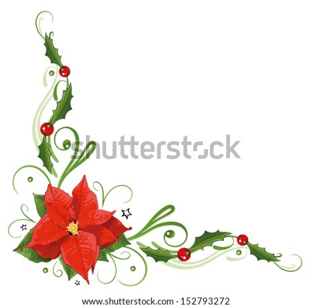 Colorful poinsettia, holly tendril - stock vector