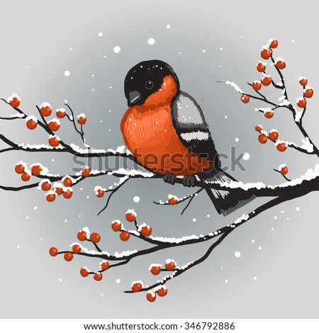 Colorful winter bullfinch on rowan branch. Merry Christmas and Happy New Year. Vector Illustration. - stock vector