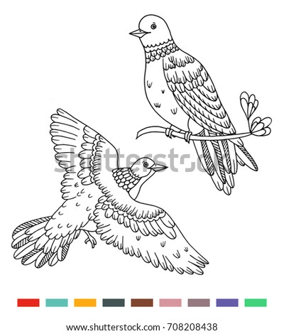 Coloring Book Birds Illustrations Stock Vector 708208438 - Shutterstock