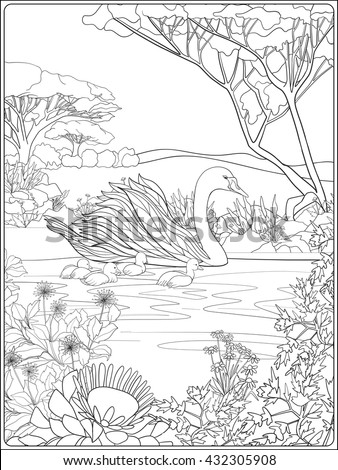 Coloring book for adult and older children coloring page with lovely mother swan and her