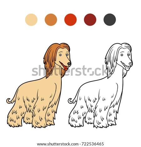 Coloring Book For Children Dog Breeds Afghan Hound