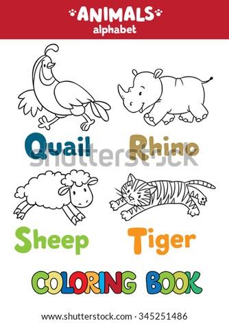 Coloring book or coloring picture of funny quail, rhino, sheep and tiger.  Animals zoo alphabet or ABC. - stock vector