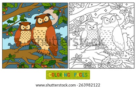coloring book owl on the tree