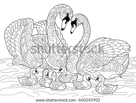 Coloring Book Page Swan Birds Family Stock Vector (Royalty Free ...