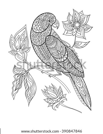 Coloring book page. Ornamental exotic bird hand drawn. Line art. Black and white vector illustration.. Parrot with fantasy flowers . T-shirt design print. - stock vector