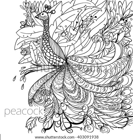 Coloring Book Pages With A Peacock Flowers Garden Jungle Postcard Isolated