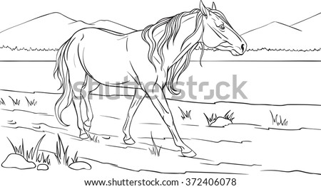Coloring Book Horse Stock Vector (Royalty Free) 372406078 - Shutterstock
