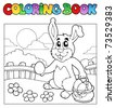 Coloring book with bunny and eggs - vector illustration. - stock photo