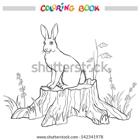 Coloring Book With Rabbit On The Stump Flower And Grass