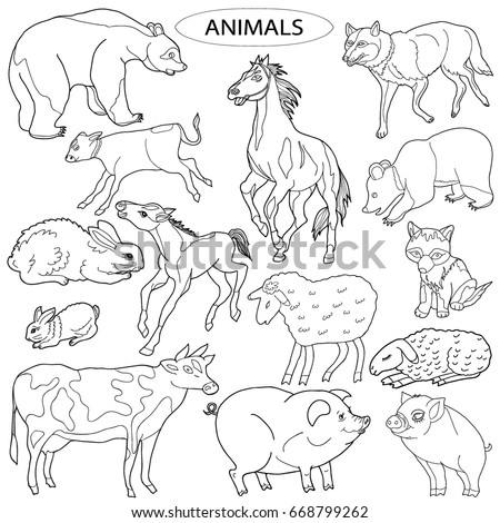 Coloring For Children A Set Of Domestic And Wild Animals Hand Drawn Black