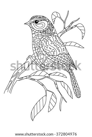 Coloring page - Bird - stock vector