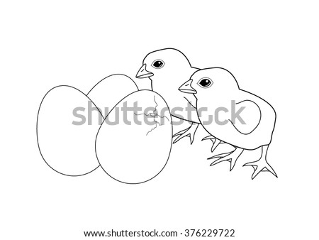 Easter Chick Coloring Page Stock Images Royalty Free