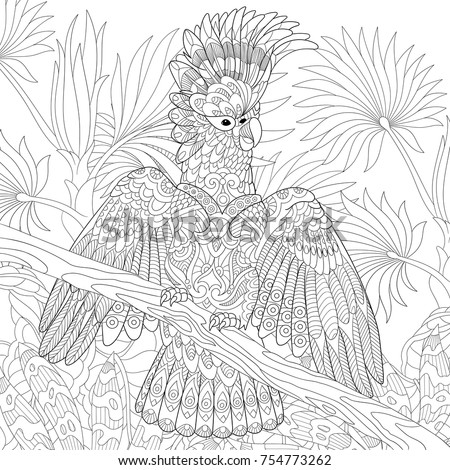 Coloring Page Australian Cockatoo Parrot Tropical Stock Vector Coloring Page Of