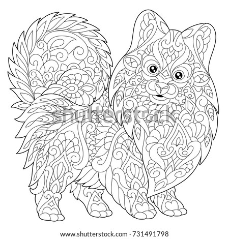 Coloring Page Pomeranian Dog Symbol 2018 Stock Vector 2018