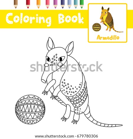 Armadillo Picture Stock Images Royalty Free Images Vectors