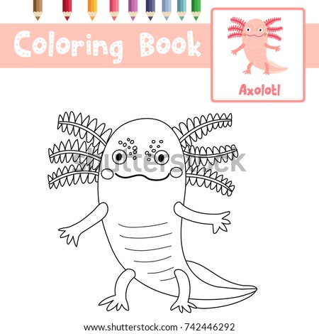 Coloring Page Of Standing Axolotl Mexican Salamander Animals For Preschool  Kids Activity Educational Worksheet. Vector