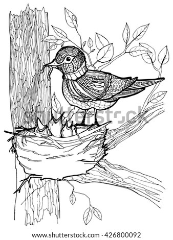 Coloring page with bird and chicks in the nest