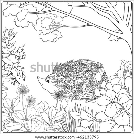 Coloring Page Lovely Hedgehog Garden Coloring Stock Vector HD ...