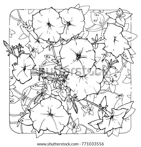 coloring page with Petunia in decorative frame