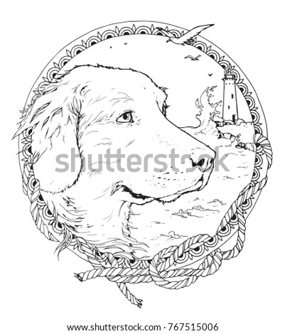 coloring page with retriever in the decorative frame