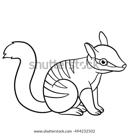 Coloring Pages. Little Cute Baby Numbat Sits And Smiles.