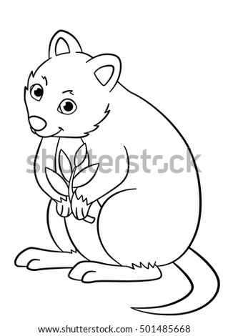 Coloring Pages Little Cute Quokka Holds Stock Vector 501485668