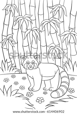 Coloring Pages Little Cute Red Panda Stock Vector (2018) 614406902 ...