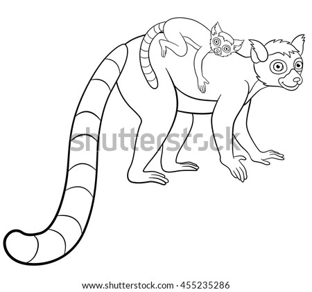 Ring tailed lemurs eating coloring pages coloring pages for Lemur coloring pages