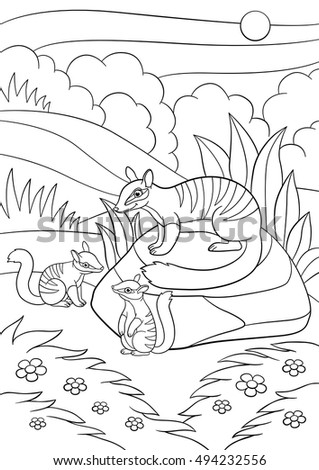 Coloring Pages Mother Numbat Her Little Stock Vector 584035930