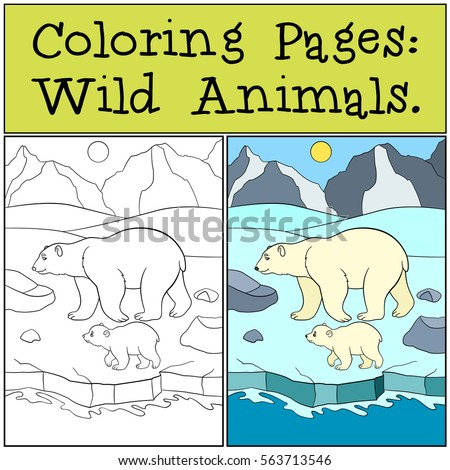 Coloring Pages Wild Animals Mother Polar Bear Walks On The Snow With Her Little