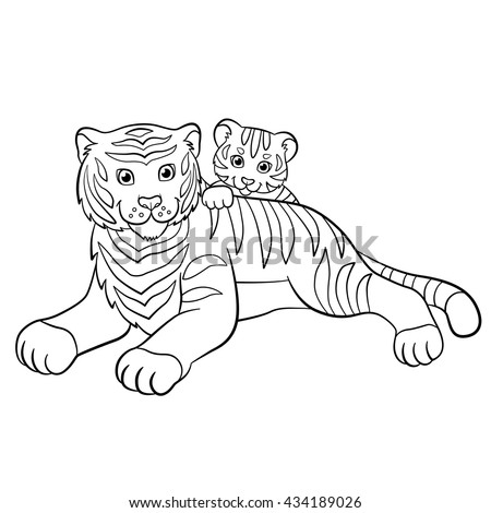 Vector illustration two white tigers love stock vector for White tiger coloring pages