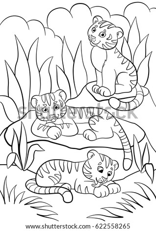 Coloring Pages Wild Animals Three Little Cute Baby Tigers In The Forest