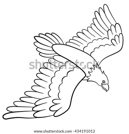 Coloring Pages Wild Birds Cute Eagle Flies And Smiles