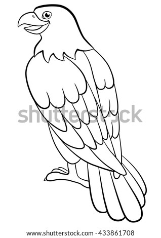 Coloring Pages Wild Birds Cute Eagle Sits And Smiles