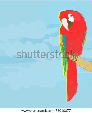 Colourful parrot bird sitting on the perch - stock vector
