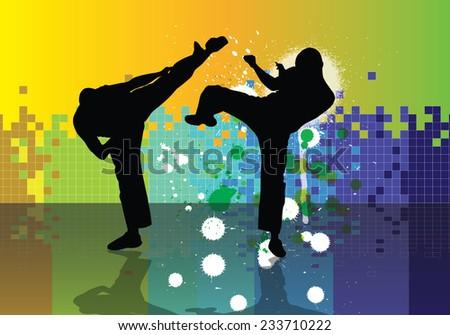 Combat, karate illustration, vector  - stock vector
