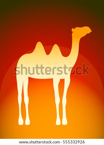 Computer graphic camel. Vector illustration of camel silhouette for your design.