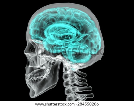 Concept of Human Brain on a Dark Background Vector - stock vector